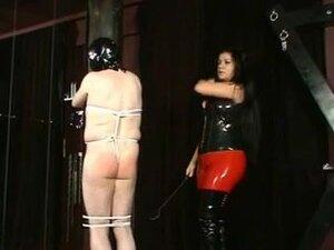 Buxom brunette in female domination porn action