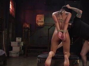 Master trains sexy brunette slave Gina Valentina