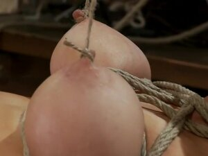 THE RANSOM' A Hogtied feature movie
