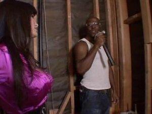 Lisa Ann interracial sex