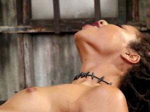 Interracial lesbian anal strap on fuck
