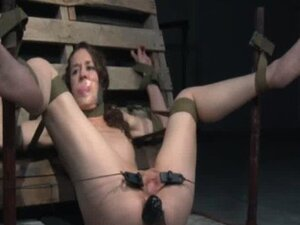 Pussy clamped sub handles butt plug
