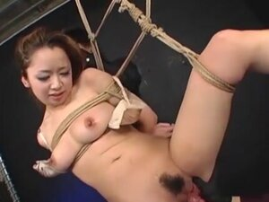 Dominated Japanese Bound And Vibed