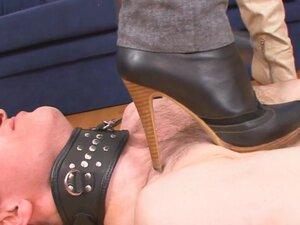 Under-Feet Video: Mia & Lilu, Now that it's